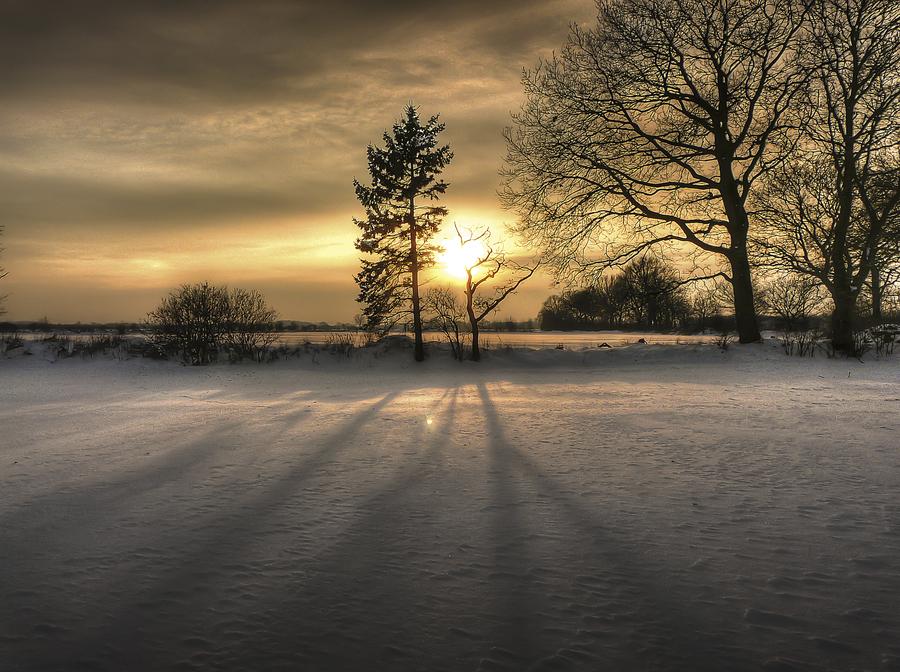 Beeindruckendes Vorher-Nachher-HDR-Bild: Bäume werfen Schatten im Schnee