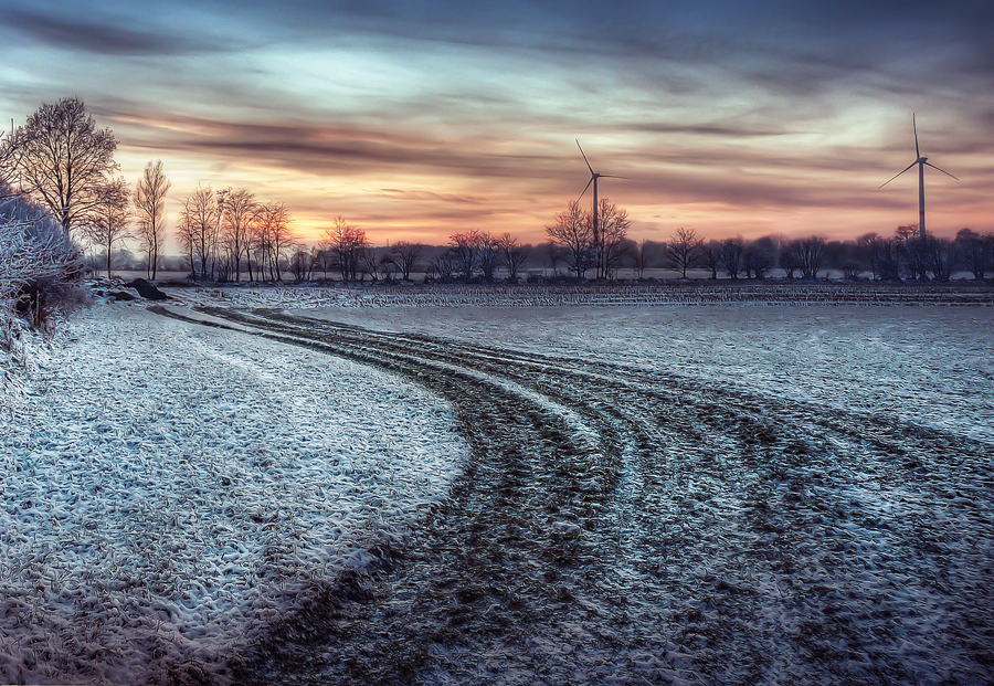 white_field_at_sunset_hdr_by_jonny_island