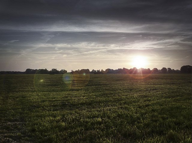 HDR-Bild: Wiese bei Sonnenaufgang HDR