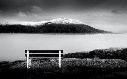 36. Surreale Natur-Fotos | Bench