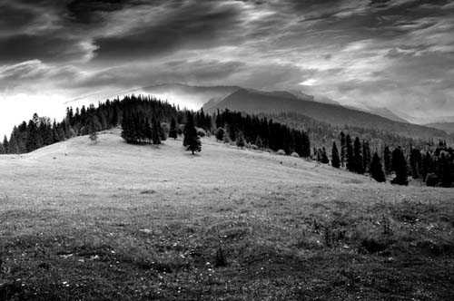 41. Surreale Natur-Fotos | landscape in bw