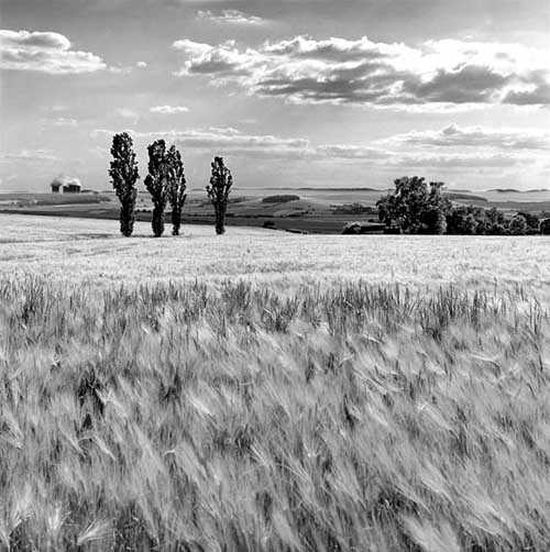 45. Surreale Natur-Fotos | Landscape Burmerange