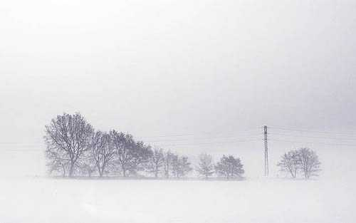 20. Surreales Naturfoto | Snow-covered landscape