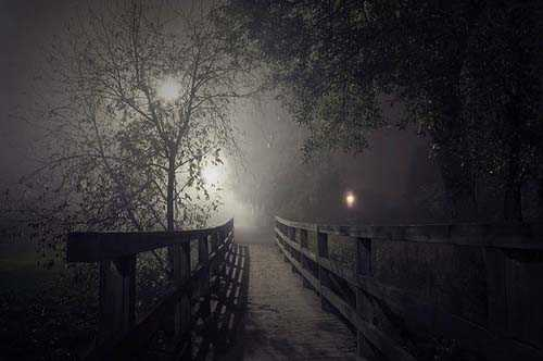 38. Surreale Natur-Fotos | Night Bridge
