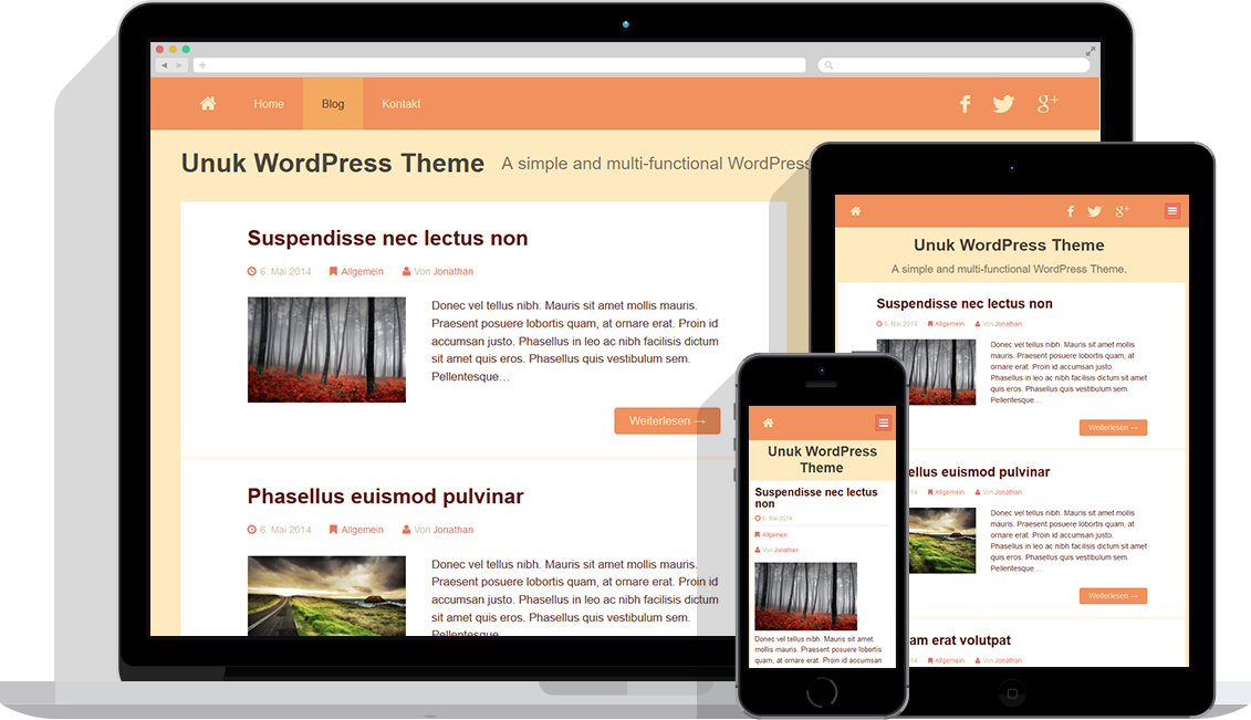 unuk-wordpress-theme-orange