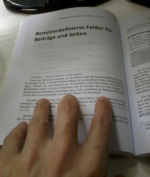 """WordPress für Entwickler"""" von David Remer"""