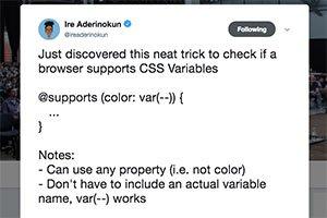 Suche nach Browser-Unterstützung von CSS-Variablen